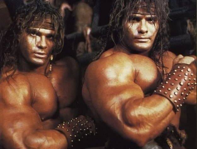 barbarian brothers