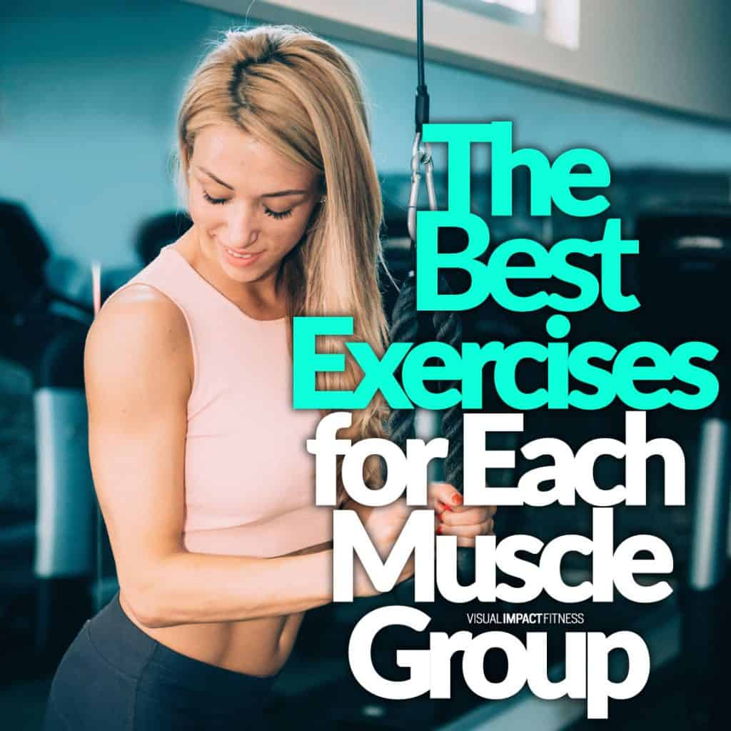 The Best Exercises for Each Muscle Group