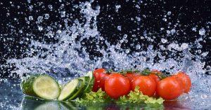 Fasting Modified Diet Program