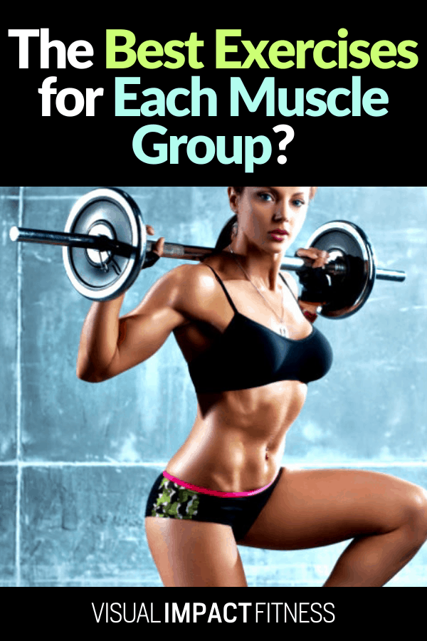 The Best Exercises for Each Muscle Group?