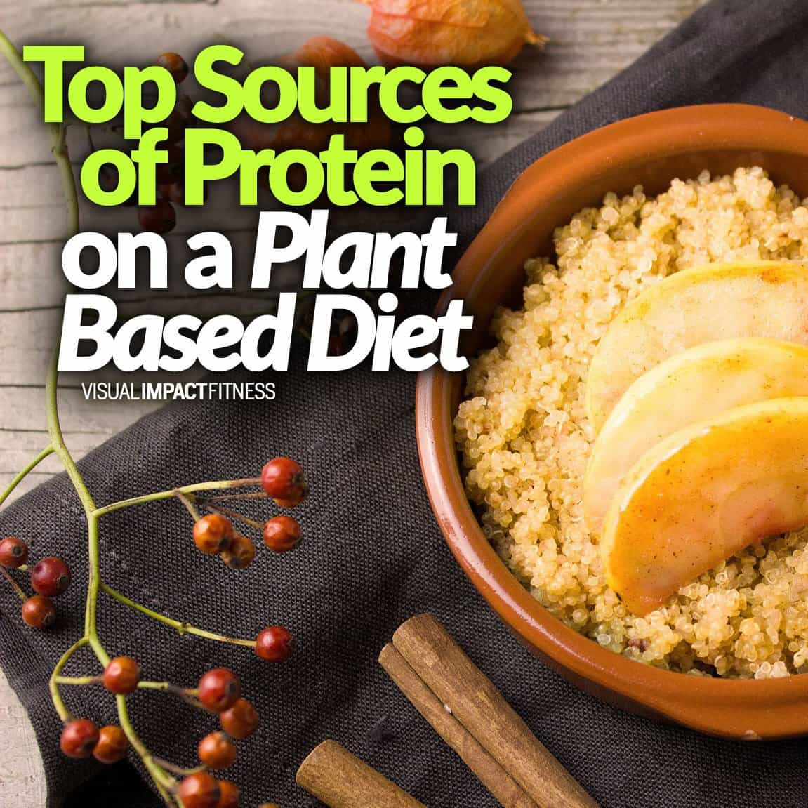 Top Sources of Protein on a Plant Based Diet