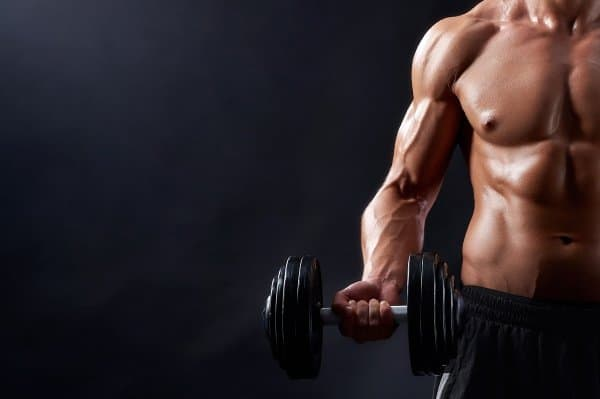 true full body dumbbell workout