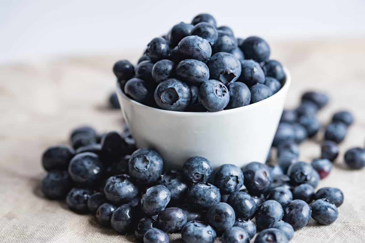 blueberries are a high fiber food