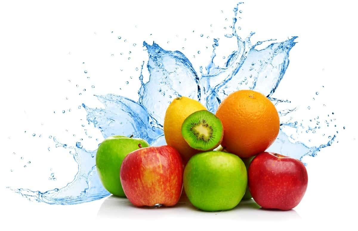 Water Rich Foods Fat Loss