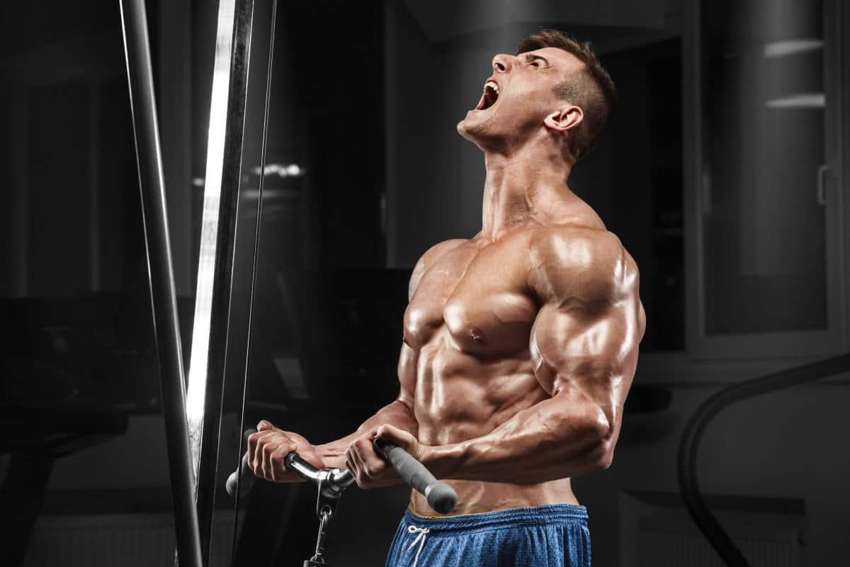 obnoxious bodybuilder