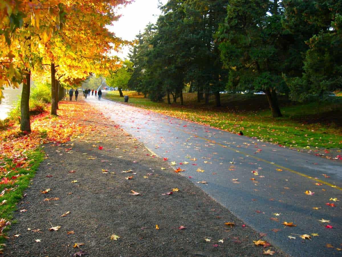 green lake seattle walking 3 miles