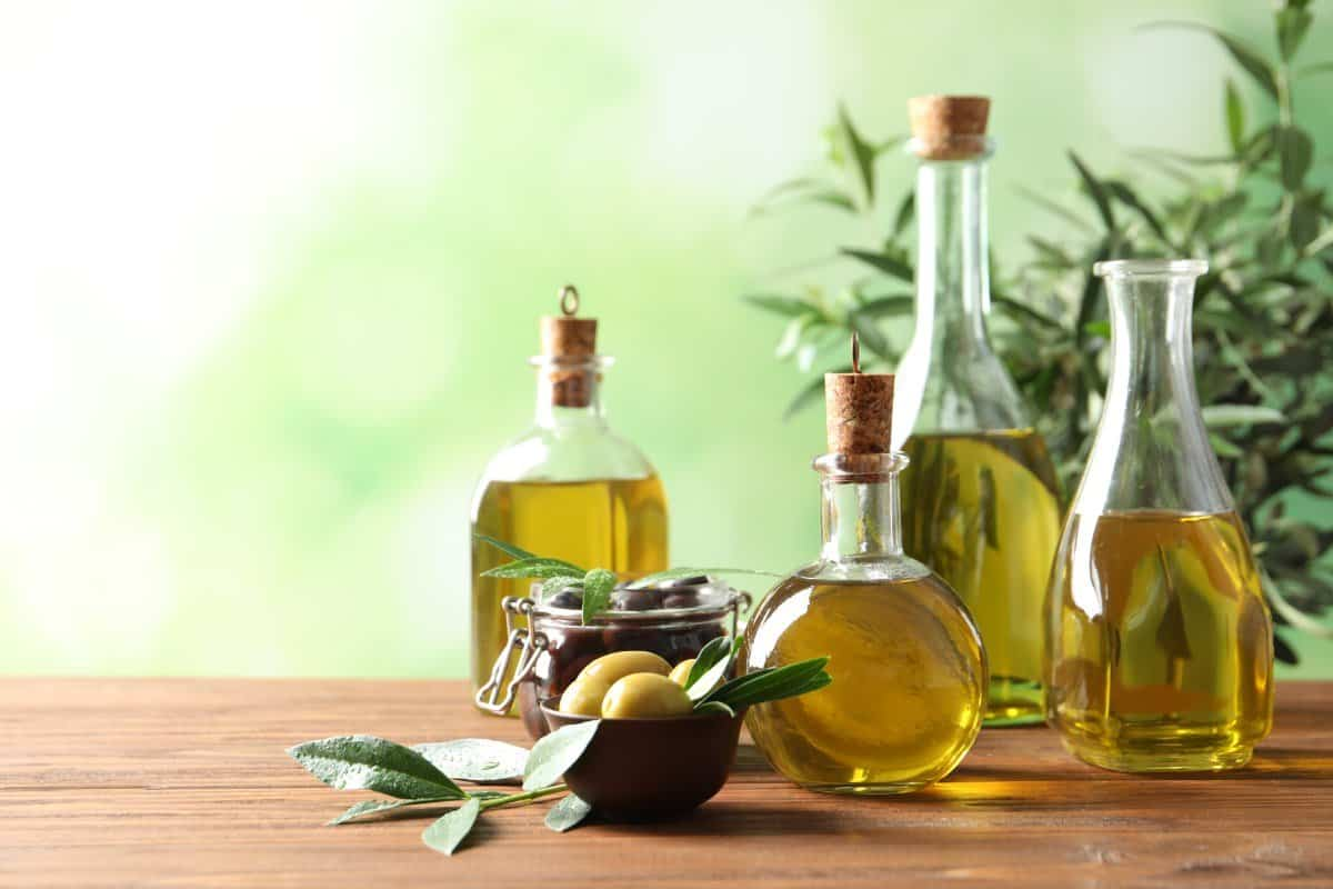 olive oil and other vegetable oils