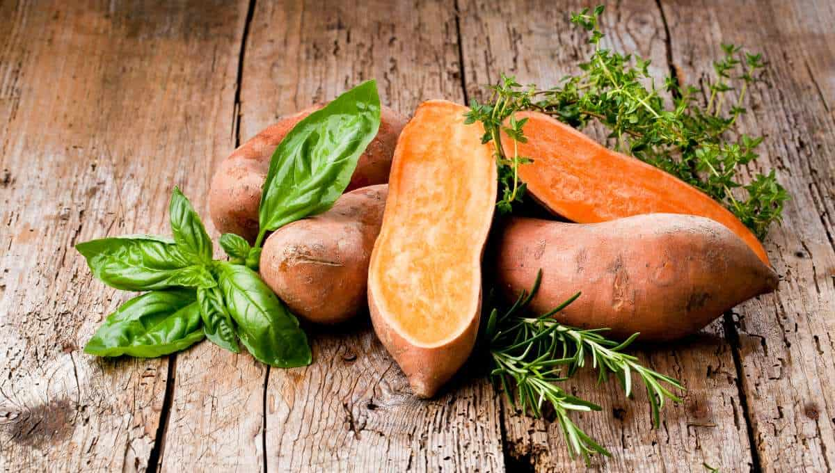 sweet potatoes for losing weight