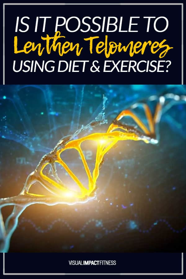 Is It Possible to Lengthen Telomeres With Diet & Exercise?